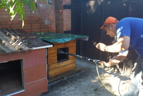 17 июня 2017 –  Посещение приюта для животных